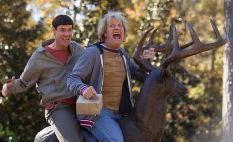 "Dumb and Dumber To: Peter Farrelly Says Don't Expect ""Dumb and Dumber Lite"""
