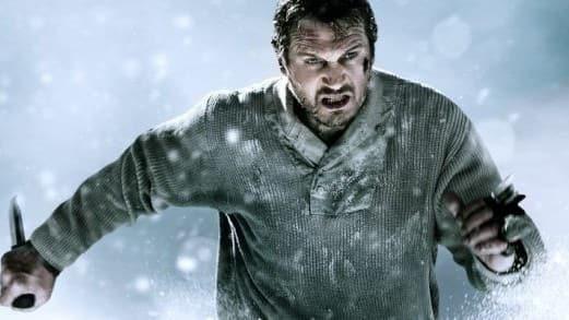 The Grey Stars Liam Neeson