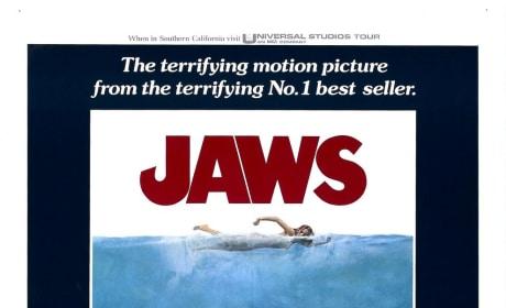 Jaws Photo