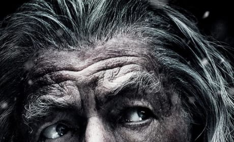 The Hobbit The Battle of the Five Armies Poster: Gandalf Looks Worried