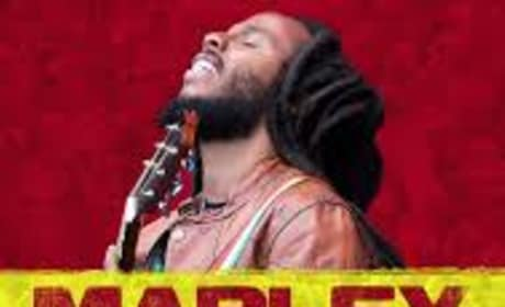 Marley Road to Africa Poster