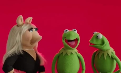 Muppets Most Wanted: Happy Valentine's Day From Kermit & Miss Piggy!