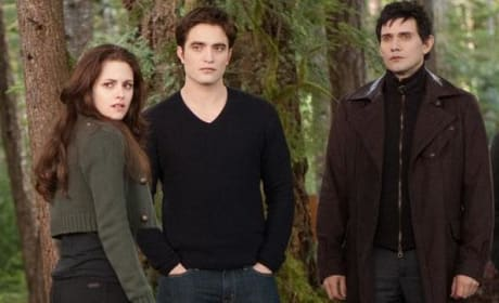 The Cast of Breaking Dawn Part 2