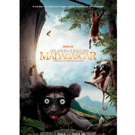 Island of Lemurs: Madagascar Prize Poster
