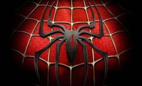 Sam Raimi Speaks on Spider-Man 4, Franchise Future