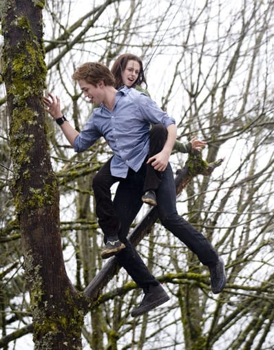 Twilight Set Photo