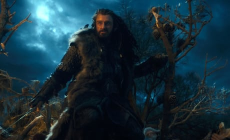 Richard Armitage in The Hobbit