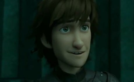 How to Train Your Dragon 2 Hiccup Photo