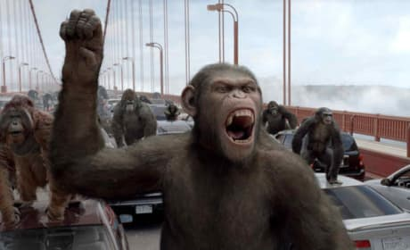 Rise of the Planet of the Apes Sequel Shooting This Summer