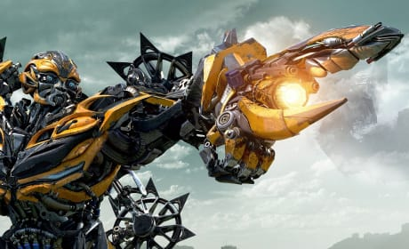 Transformers Age of Extinction Towers Over Competition: Weekend Box Office Report