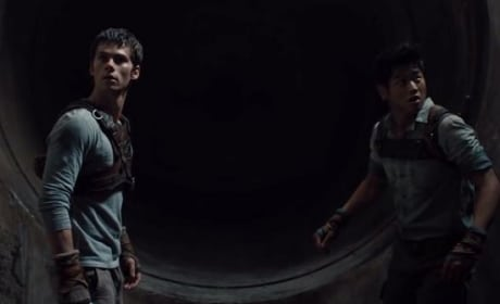 The Maze Runner Ki Hong Lee Dylan O'Brien