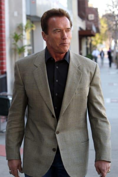 """The Terminator"" Arnold Schwarzenegger"