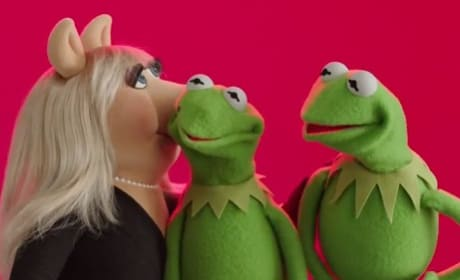 Muppets Most Wanted Kermit Miss Piggy Constatine