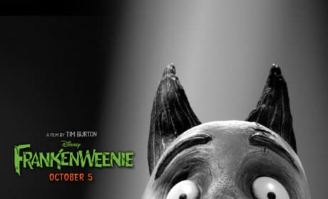 Sparky Frankenweenie iPhone Background