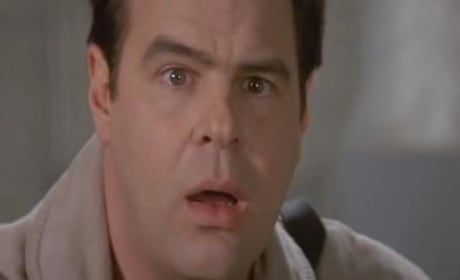 30 Fun Facts About Ghostbusters