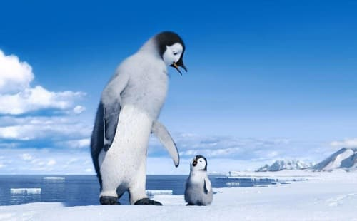 The Cast of Happy Feet 2