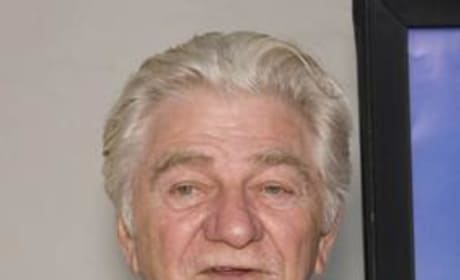 Seymour Cassel Picture
