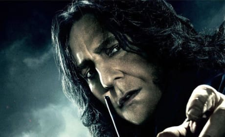 HP7 Snape Hunt Poster