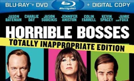 Horrible Bosses Blu-Ray