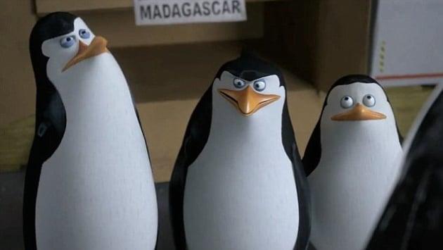 11 Best Penguins of Madagascar Quotes - Movie Fanatic