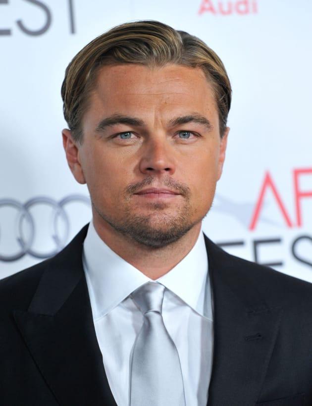 Leonardo DiCaprio Red Carpet Picture
