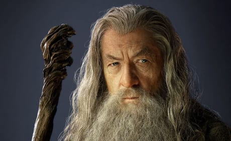 Gandalf the Grey Still