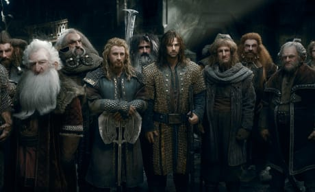 The Hobbit: The Battle of The Five Armies Dwarves