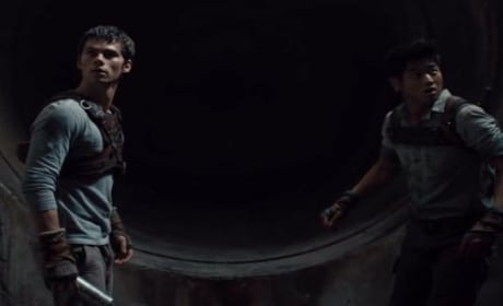 The Maze Runner Clip: Survival Appears Impossible