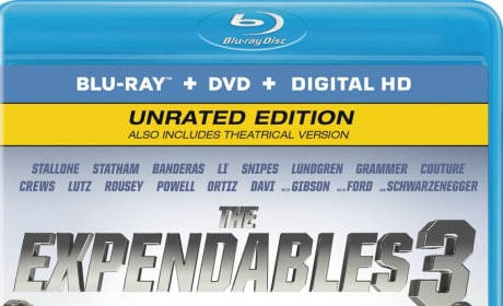 The Expendables 3 DVD Review: Biggest Action Stars Come Home