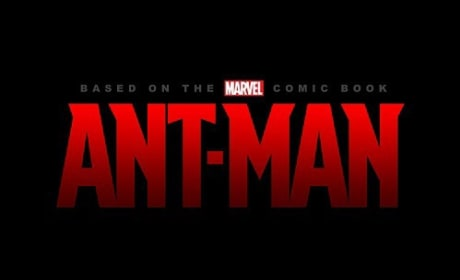 Who should play Ant-Man?