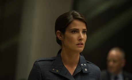 Captain America: The Winter Soldier Cobie Smulders