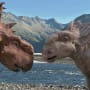 Walking with Dinosaurs 3D Still