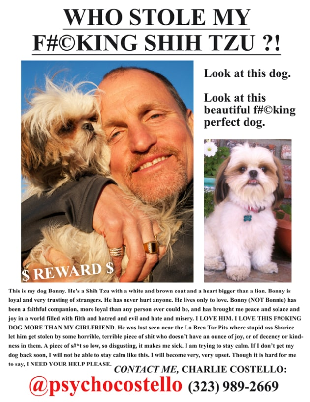 Seven Psychopaths Lost Dog Flyer