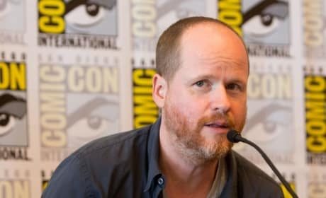 Joss Whedon Gives Details on Avengers: Age of Ultron
