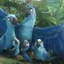 Rio 2 Jewel & Blu