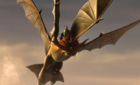 How to Train Your Dragon 2 Dragon Battle