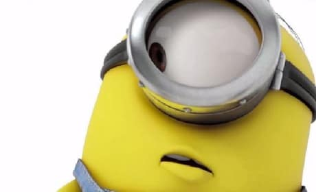 Despicable Me 2 DVD Announced: Minion Movie Preview!