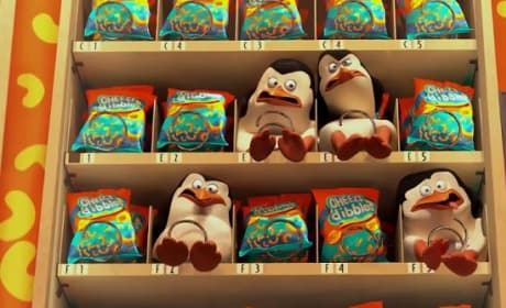 Penguins of Madagascar Vending Machine Photo