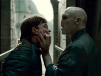 Harry and Voldemort: Nose to, uh... oh, right.