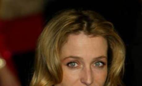 Gillian Anderson Picture