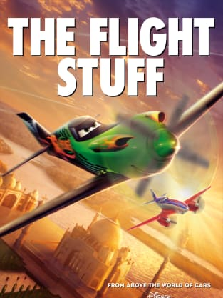 Planes Poster - Flight Stuff