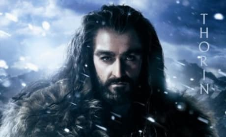 The Hobbit Character Posters: Meet All the Dwarves