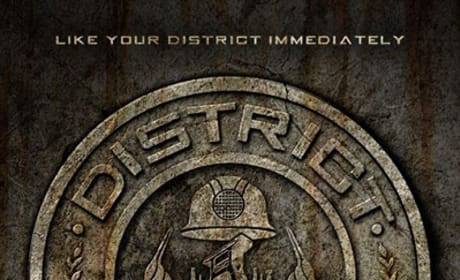 Hunger Games: Capitol Site Releases District Seals
