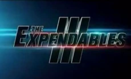 The Expendables 3 Logo
