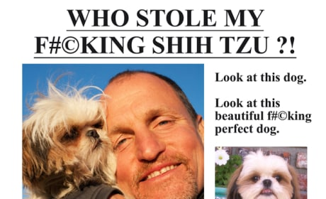 Seven Psychopaths Lost Dog Flyer