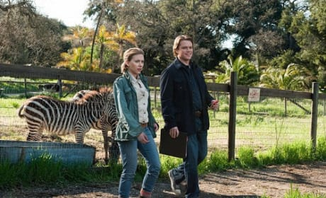 Matt Damon and Scarlett Johansson in We Bought a Zoo