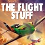 Planes Poster - Flight Stuff