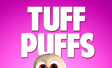 Free Birds Tuff Puffs Character Poster