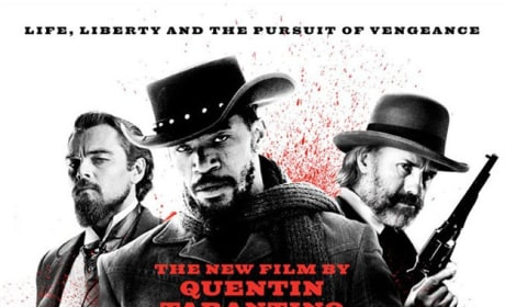 Movie Poster Django Unchained