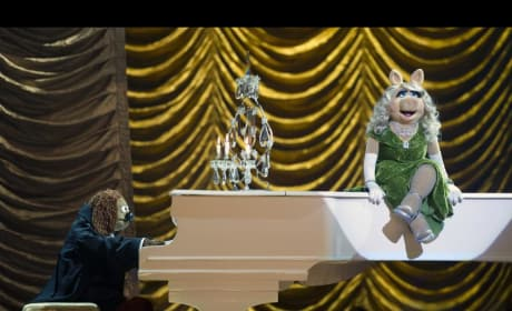 Miss PIggy Muppets Most Wanted